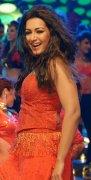 Film Actress Catherine Tresa New Pics 3069
