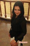 Latest Photo Tamil Actress Catherine Tresa 8969