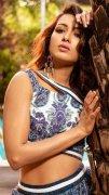 Tamil Heroine Catherine Tresa Sep 2020 Images 4212
