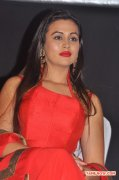Tamil Actress Charlotte Claire 6336