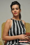 2014 Album Deeksha Panth Tamil Movie Actress 4690