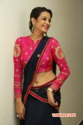 2014 Album Indian Actress Deeksha Panth 7230