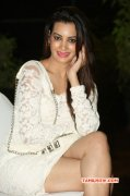 2014 Stills Deeksha Panth Film Actress 6414