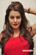 2015 Pictures Film Actress Deeksha Panth 3638