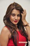 Actress Deeksha Panth Photo 2669