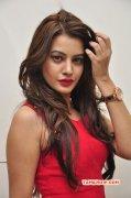 Dec 2015 Picture Deeksha Panth 8939