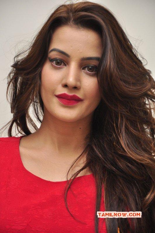 Deeksha Panth Actress Latest Album 8106