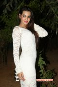 Deeksha Panth Film Actress Dec 2014 Still 1858