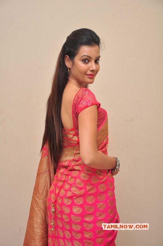 Deeksha Panth Film Actress New Pictures 5808