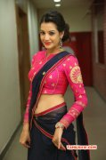 Deeksha Panth Film Actress Recent Galleries 710