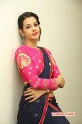Deeksha Panth Heroine 2014 Albums 6253