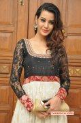 Deeksha Panth Indian Actress Jan 2015 Photo 248