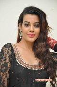 Deeksha Panth Indian Actress Wallpapers 3644
