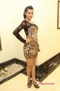 Deeksha Panth South Actress New Wallpapers 4284