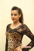 Deeksha Panth South Actress Recent Wallpaper 3423
