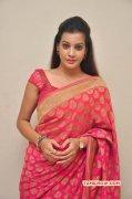 Deeksha Panth Tamil Movie Actress 2015 Pic 8915