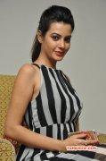 Deeksha Panth Tamil Movie Actress Stills 354