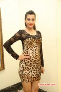 Latest Gallery Deeksha Panth Actress 9117