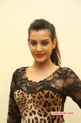 Latest Gallery Indian Actress Deeksha Panth 9545