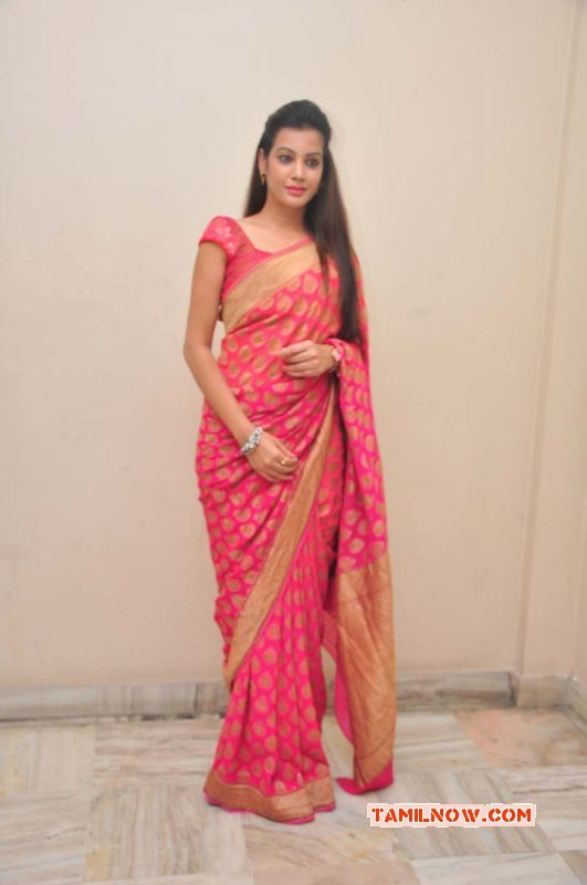 Latest Photos Film Actress Deeksha Panth 1062