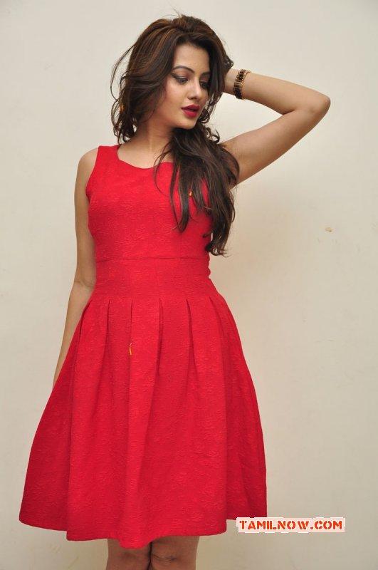 Latest Picture Deeksha Panth 2748