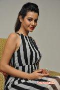 Latest Pictures Deeksha Panth Actress 4112