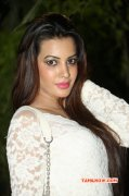 Movie Actress Deeksha Panth Dec 2014 Pics 6520