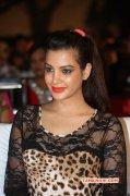New Album South Actress Deeksha Panth 1760