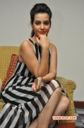 Nov 2014 Images Indian Actress Deeksha Panth 7406