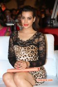 Pictures Deeksha Panth Heroine 8950