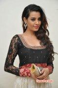 Recent Picture Deeksha Panth South Actress 4936