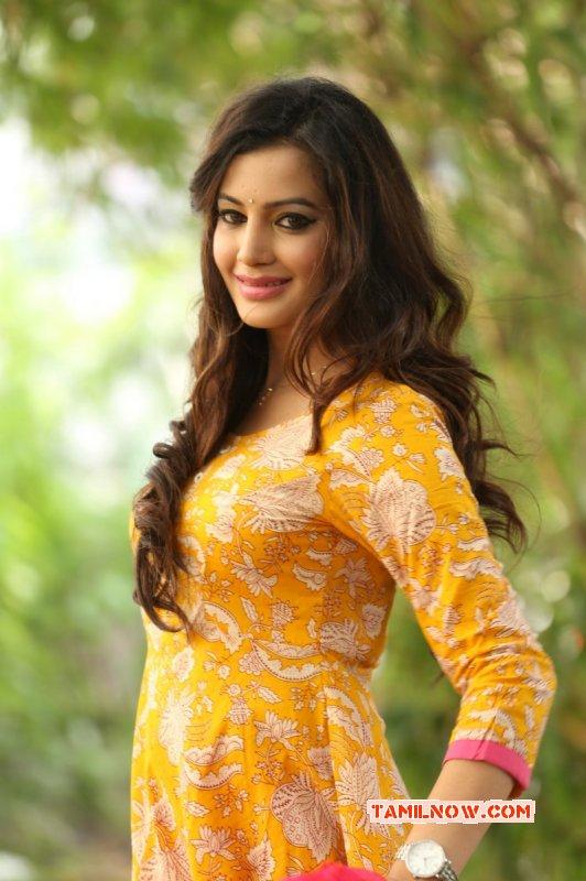 South Actress Deeksha Panth New Gallery 245