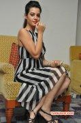 Stills Deeksha Panth Indian Actress 2810