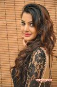 Tamil Heroine Deeksha Panth Jan 2015 Pictures 5591