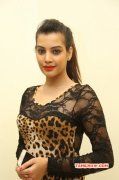 Tamil Heroine Deeksha Panth Latest Pic 1186