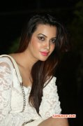 Tamil Movie Actress Deeksha Panth Dec 2014 Pictures 2770