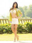 Actress Deeksha Seth 9607