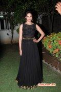 Aug 2015 Photos Deepa Sannidhi Actress 5706