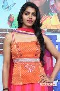 New Pics Tamil Movie Actress Dhansika 5331