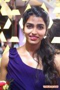 Tamil Actress Dhansika 8938