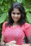 Tamil Actress Dhivya 5763