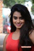 Dimple Chopade Actress Recent Photos 3912