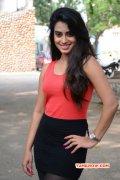 Dimple Chopade Indian Actress 2014 Stills 950