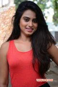 Dimple Chopade Indian Actress Latest Wallpapers 6696