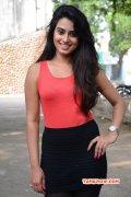 Indian Actress Dimple Chopade Pics 5747