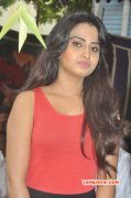 New Image Movie Actress Dimple Chopade 7924