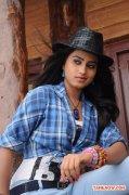 Tamil Actress Dimple Chopade Photos 808
