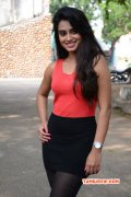 Tamil Heroine Dimple Chopade Latest Wallpapers 8514