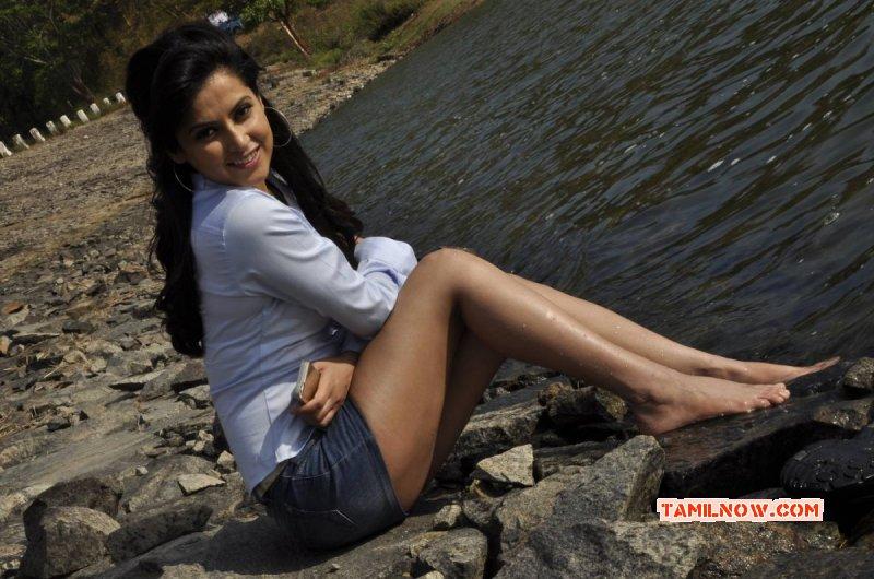 2016 Still Disha Pandey Indian Actress 9511