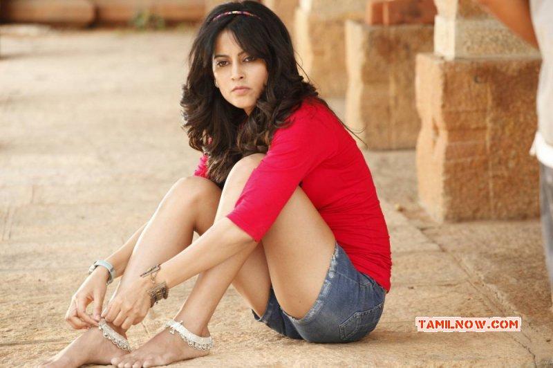 Disha Pandey Actress Recent Pictures 1776